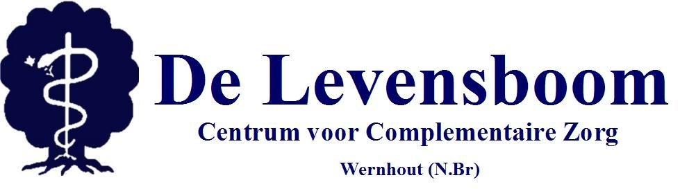 logo-blue met tekst1